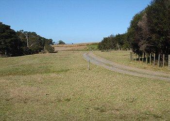 Waharau Regional Park (ARC)